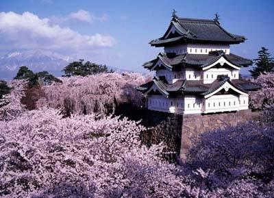 صورة السياحة في اليابان – تعرف على أشهر المعالم السياحية