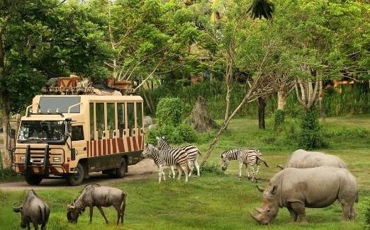 السياحة في جزيرة بالي