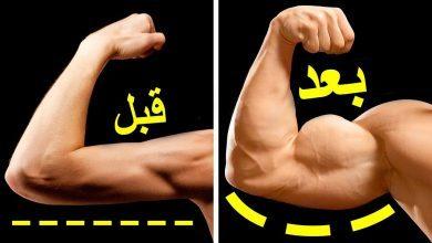 صورة تمرين العضلة ذات الرؤوس الثلاثة