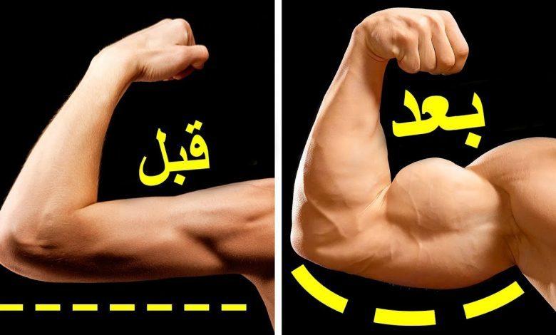 تمرين العضلة ذات الرؤوس الثلاثة