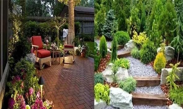 ديكور حديقة المنزل